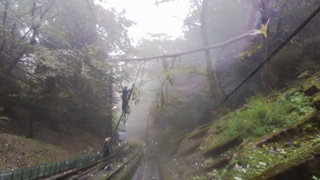 高野山ケーブルカーの線路にかかった倒木=和歌山県高野町(南海電鉄提供)