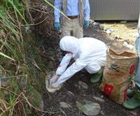 静岡県でも豚コレラ確認 藤枝市内で死んだイノシシから「陽性」