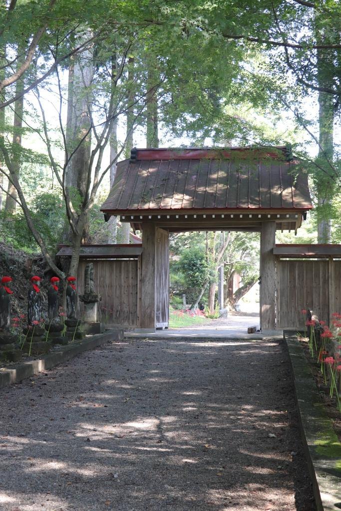 天徳寺宝衍の隠居所、金蔵院の山門=佐野市仙波町