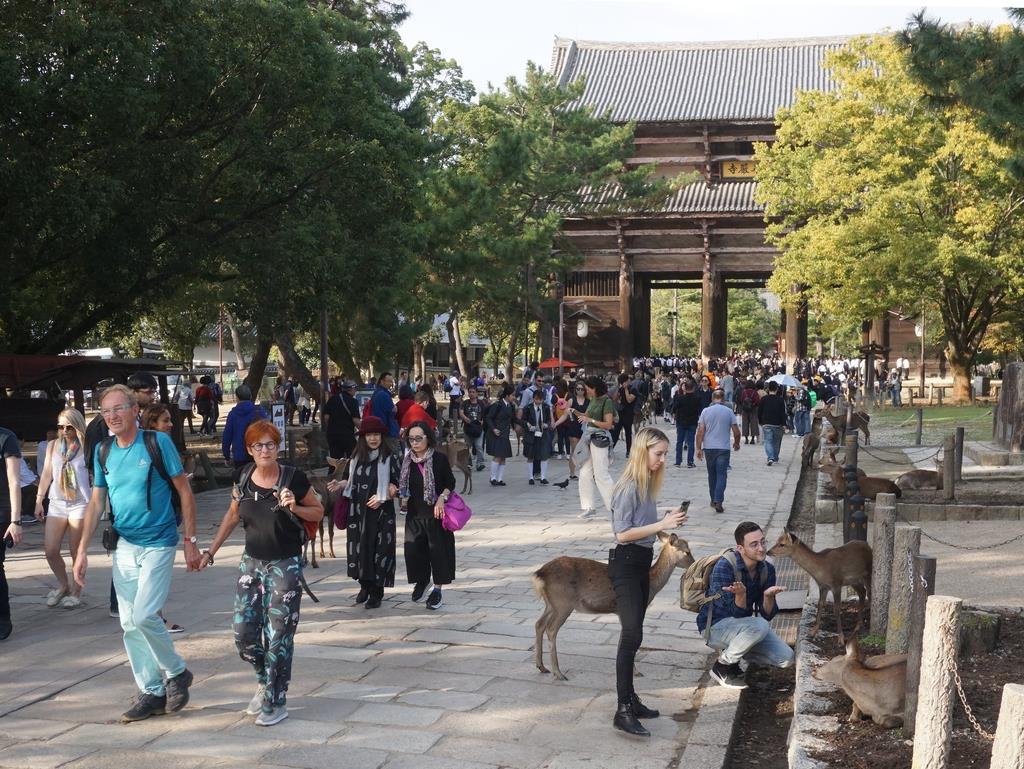 大勢の観光客でにぎわう奈良公園だが、ほとんどが日帰り客だ=奈良市
