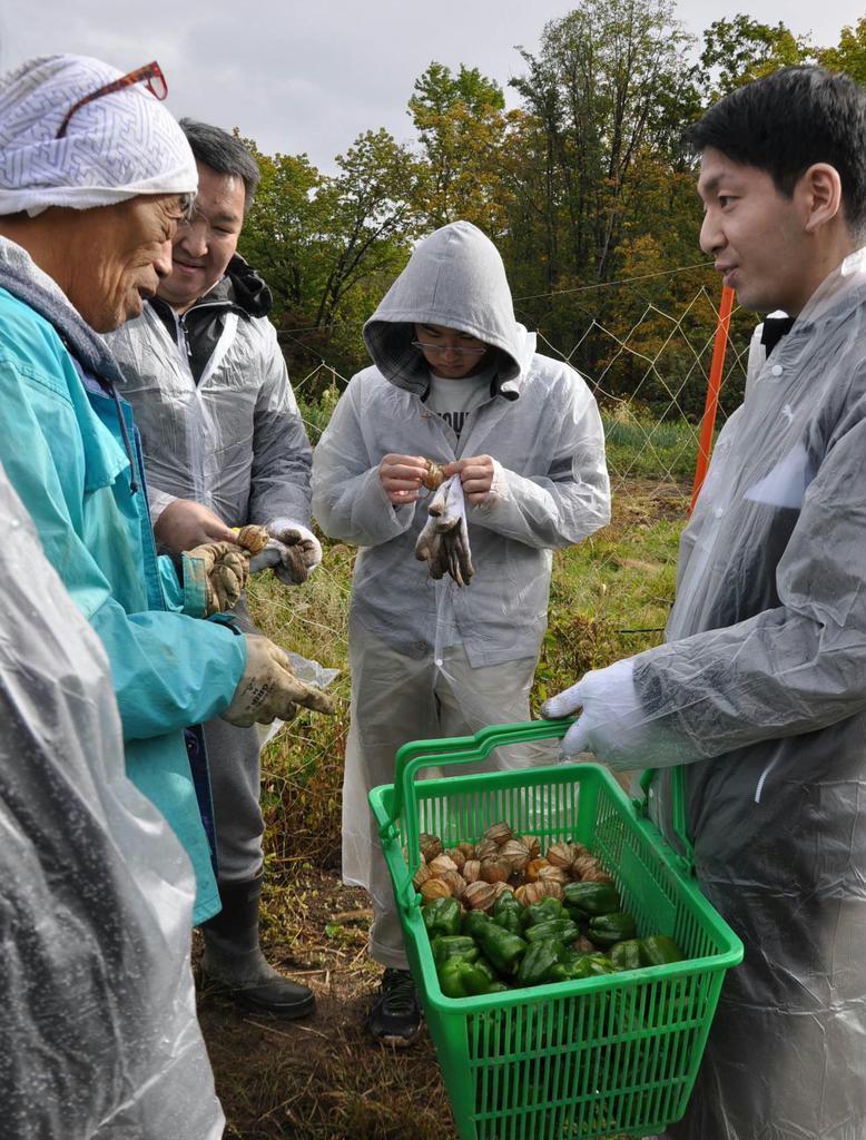 自社農園で収穫した自然栽培の食用ホオズキを味見する札幌パークホテルのスタッフら =札幌市西区