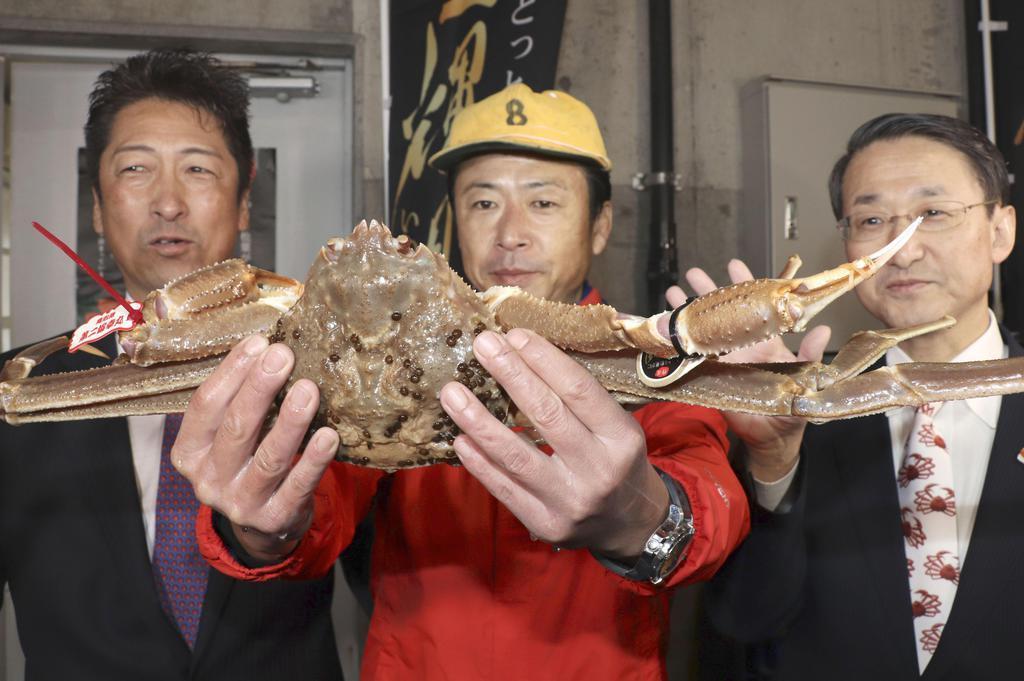 鳥取市の鳥取港で行われた初競りで、500万円で競り落とされたズワイガニ=7日午前