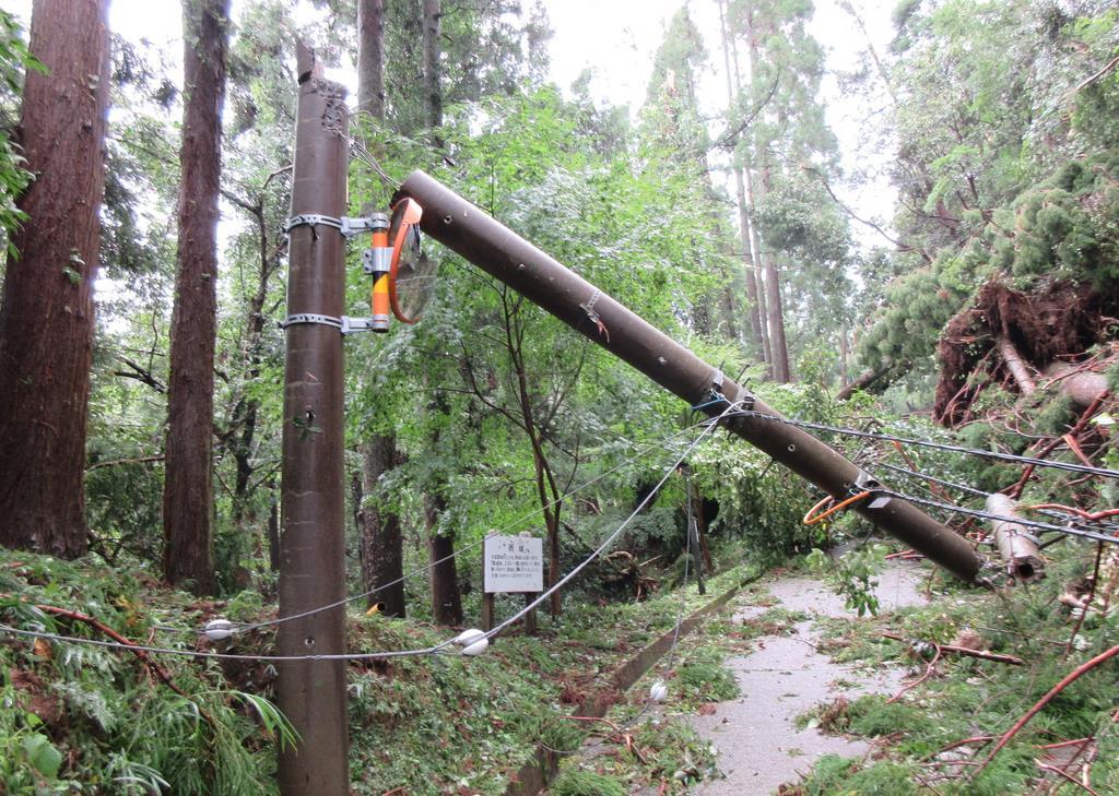台風15号の強風で折れた天守閣や資料館に向かう道路脇の電柱=9月9日(久留里城址資料館提供)