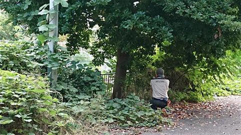 アキーゴの保護直前の様子=大阪市鶴見区(天王寺動物園提供)