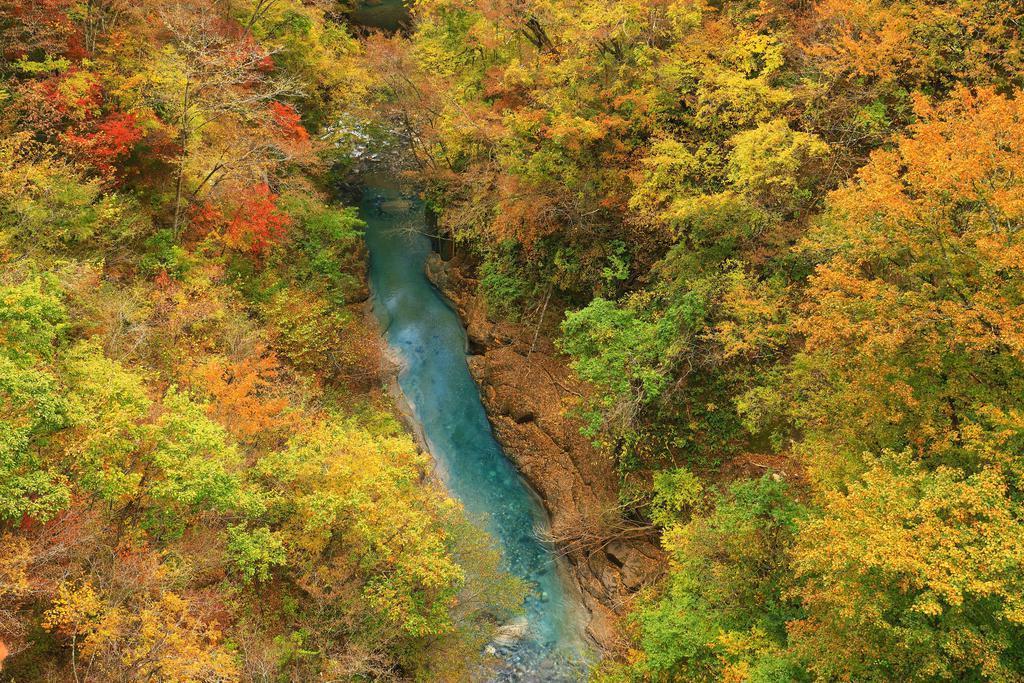 錦に染まる雪割渓谷に、エメラルドグリーンの阿武隈川が彩りを加えていた=福島県西郷村