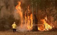 豪州で山火事、シドニーに迫る