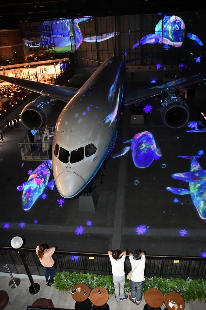 ボーイングの実機が展示され、光と音のショーが繰り広げられる「フライト・オブ・ドリームズ」=中部国際空港