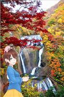 【茨ひよりの「いばらき日和」】観光で被災地支援 さあ、絶景の紅葉スポットに