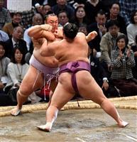 朝乃山の年間最多勝確定 小結以下は初 大相撲九州場所