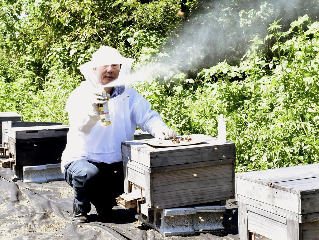 ハチの活動を一時的に抑える忌避剤スプレーを開発した高知大の金哲史教授=高知県南国市