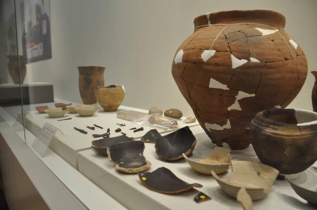 帝京大八王子キャンパスから出土した土器は、平安時代のエミシが使った土器の特徴を備えている=東京都八王子市(橋本昌宗撮影)