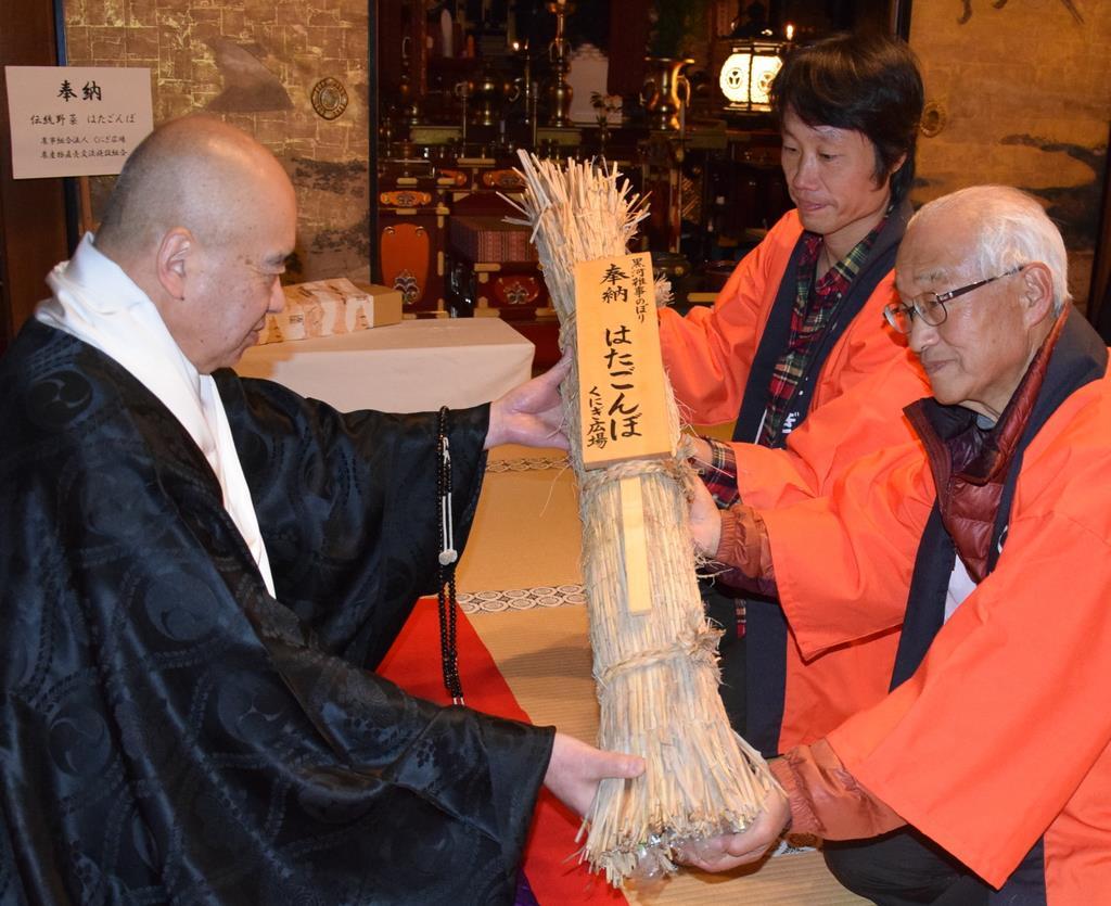 金剛峯寺に奉納された特産ゴボウ「はたごんぼ」=和歌山県高野町