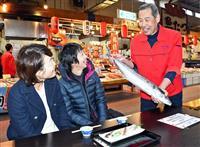 冬の味覚「特選京鰆」出荷 京都府漁協組合、ブランド化進める