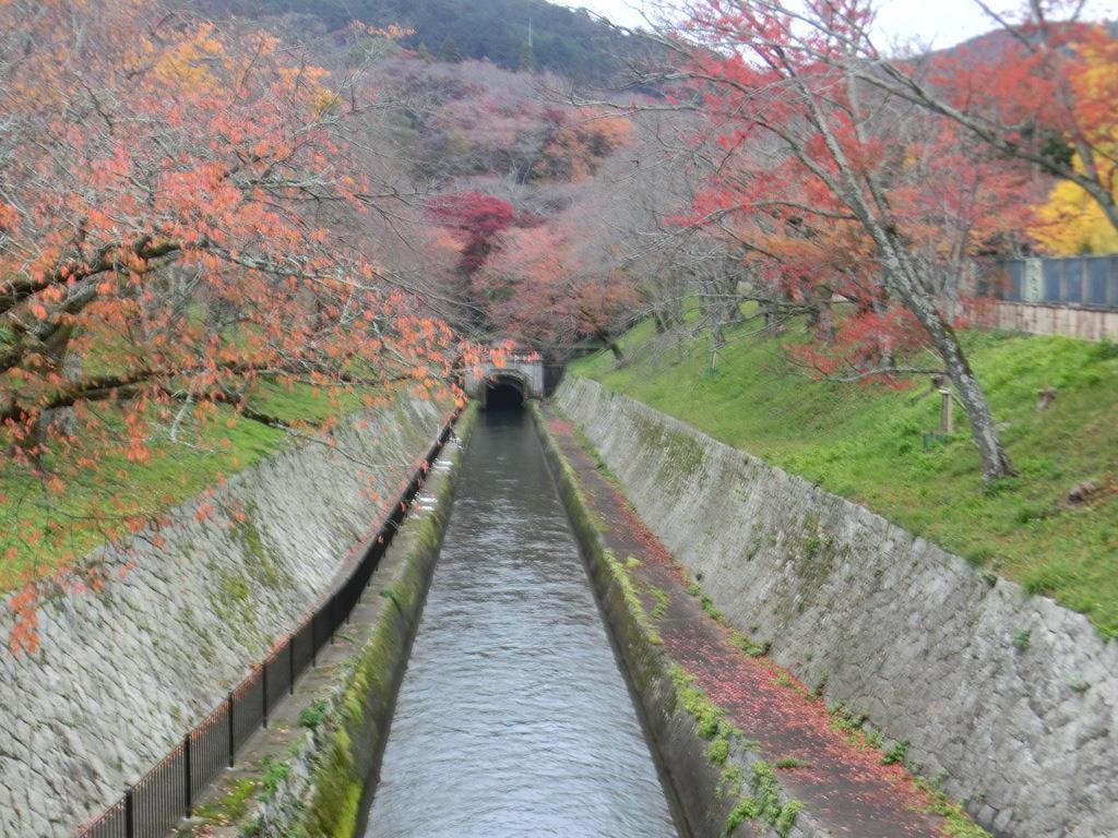 秋の琵琶湖疏水第一トンネル=大津市