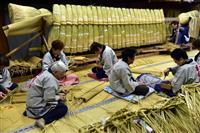 成田山で大しめ縄づくり 台風前に稲わら用意「来年は災害ない年に」