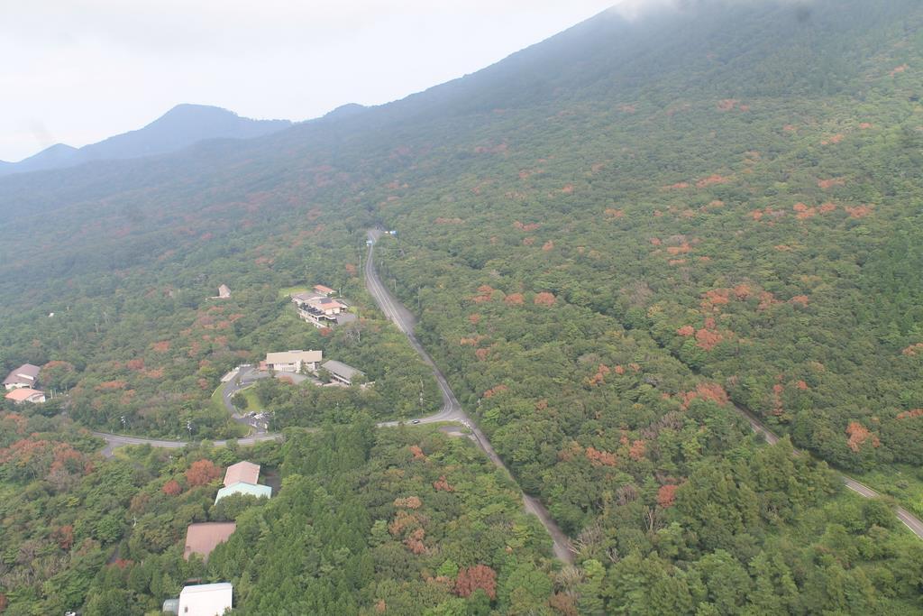 ナラ枯れ被害で葉が赤くなった樹木の目立つ大山(鳥取県提供)