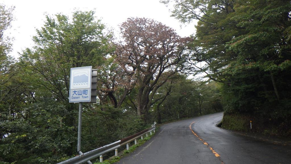 ナラ枯れ被害で葉が赤くなった樹木=鳥取県大山町(鳥取森林管理署提供)