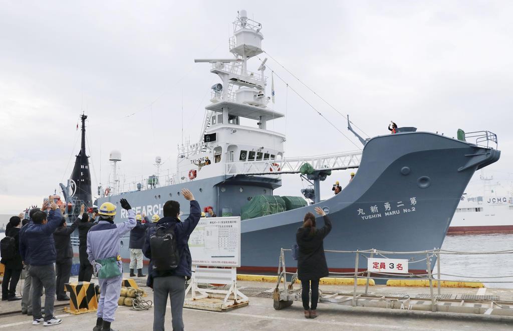 宮城県塩釜市の塩釜港から出港するクジラの調査船を見送る家族ら=2日午前