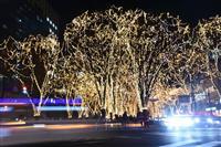 「光のページェント」開幕 仙台、レストランバスも運行