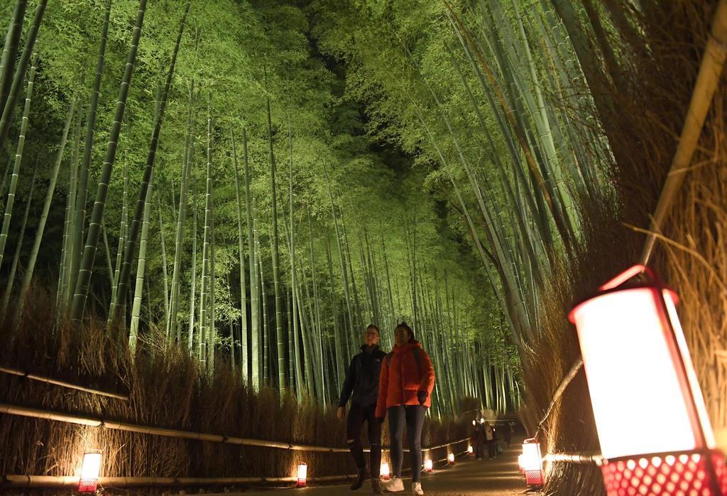 【動画あり】初冬の嵐山を彩る花灯路で試験点灯