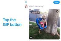TwitterでiPhoneの「Live Photos」をGIFとして投稿可能に