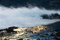 【告知】中国の世界遺産 元陽・羅平の絶景をめぐる8日間 2月出発