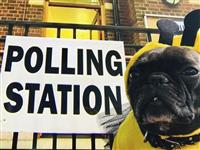 与党の過半数確保焦点 英総選挙、開票へ EU離脱の針路問う