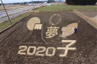 那須塩原にネズミの畑アート