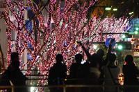 名所の桜並木、光で再現 福島、避難区域外に