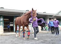 レッツゴードンキが引退 15年桜花賞馬 中央競馬