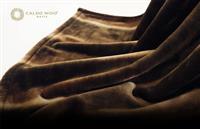 イタリアデザイン×こだわりの日本製 軽くて暖かい洗える毛布「カルドニード・ノッテ2」