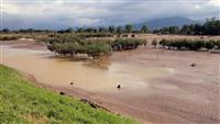 年内に整備計画見直しへ 台風19号被害で信濃川水系