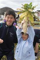 大根、大きくなったね 東洋大姫路高生ら商品化目指し収穫