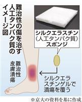人工タンパク貼り難治性潰瘍を治療 京都大など素材開発