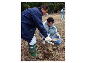栃木県で経口ワクチン散布始まる 豚コレラ対策