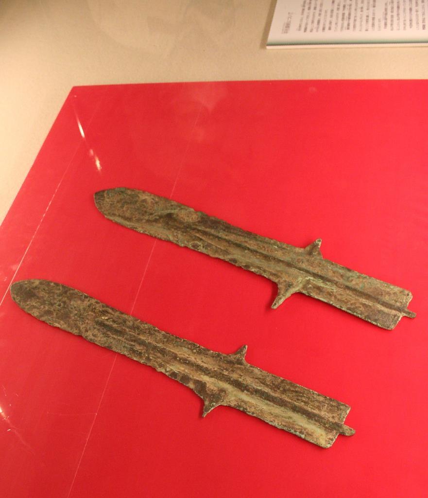 松山市考古館が新たに収蔵し、展示している平形銅剣