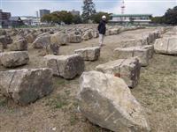 6000個の岩石積み直し「石垣の名城」復活へ