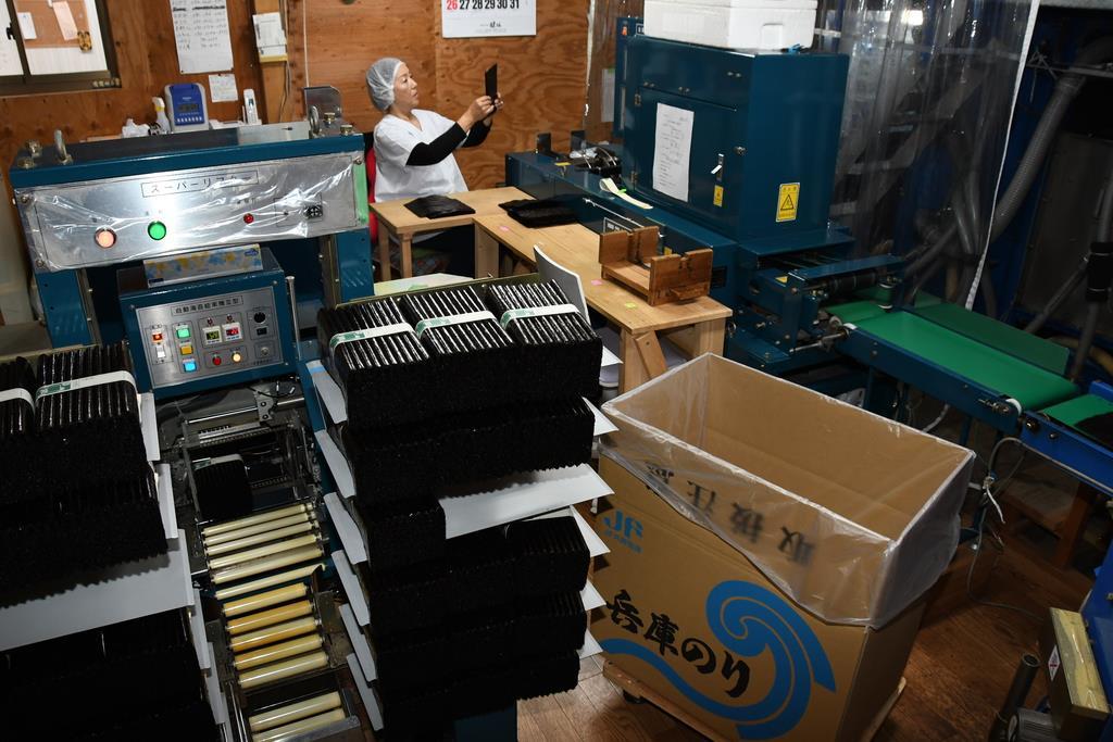 束ねられたのり。箱詰めにして出荷する=兵庫県淡路市の「巌水産」