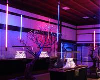 デジタル画像で一新 大阪天満宮「盆梅と刀剣展」