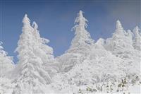 少しささやかですが 福島・箕輪山に樹氷