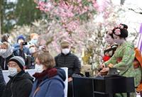 コロナ感染拡大で芸舞妓のお茶の「お運び」中止 京都