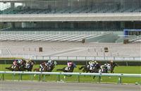 阪神競馬で無観客レース 新型コロナの感染拡大防止