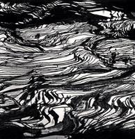 抽象絵画のような世界 マイケル・ケンナ写真展