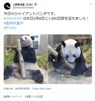 シャンシャンは元気です 上野動物園、休園中に情報発信