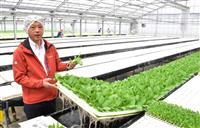 【しずおかこのひと】障害者雇用で農業を変える 京丸園 鈴木厚志さん