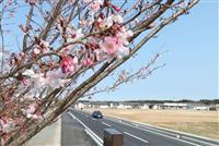 聖火への思いさまざま 福島・初日のリレールート