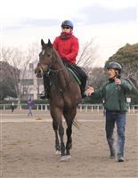 グランアレグリア1番人気 競馬の高松宮杯前日オッズ