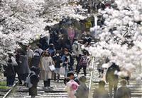 大雪の首都閑散も…京都の桜スポットには賑わい