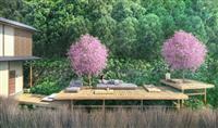 テラスで、客室で、桜を独り占め 関西のホテルが花見プラン