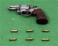 自宅車庫に拳銃埋める 容疑の住吉会系組幹部を逮捕